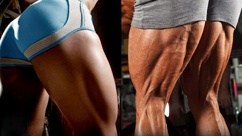 The Best 5 Exercises For Increasing Hamstrings Mass, According to Bodybuilding Experts – Stay Strong